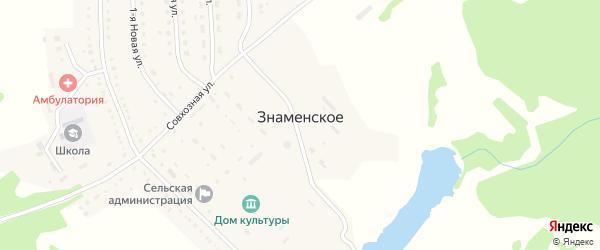 Больничная улица на карте Знаменского села Пензенской области с номерами домов