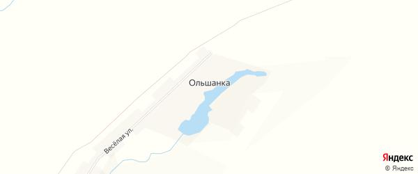 Карта села Ольшанки в Пензенской области с улицами и номерами домов