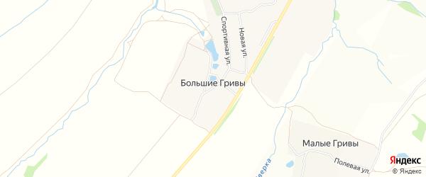 Карта деревни Большие Гривы в Нижегородской области с улицами и номерами домов