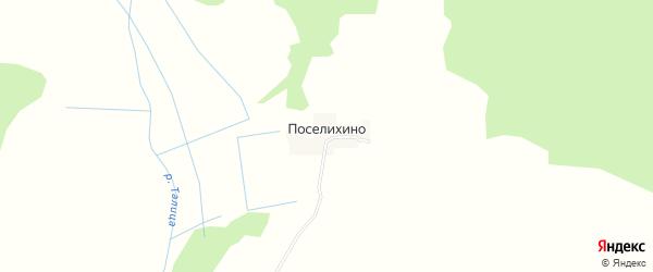 Карта деревни Поселихино в Костромской области с улицами и номерами домов