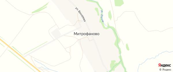 Карта села Митрофаново в Пензенской области с улицами и номерами домов