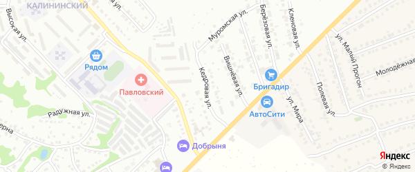 Кедровая улица на карте Павлово с номерами домов
