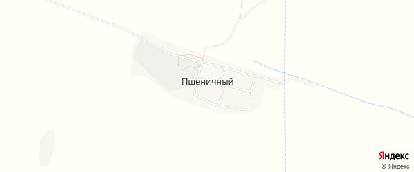 Карта Пшеничного поселка в Ставропольском крае с улицами и номерами домов