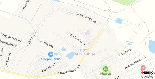 Улица Мичурина в жилом районе Капельница в Железноводске с номерами домов на карте. Спутник и схема онлайн