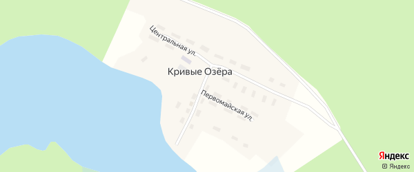 Центральная улица на карте поселка Кривые Озера с номерами домов