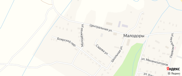 Молодежная улица на карте села Малодоры с номерами домов