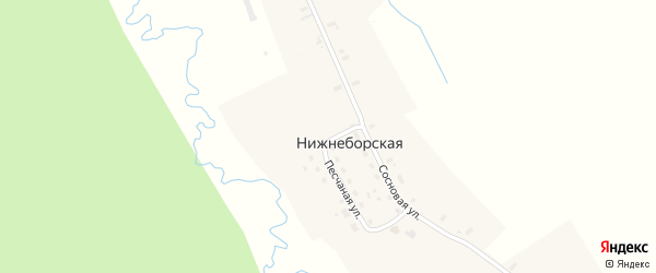 Сосновая улица на карте Нижнеборской деревни с номерами домов