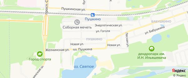 Карта поселка Пушкино города Дзержинска в Нижегородской области с улицами и номерами домов