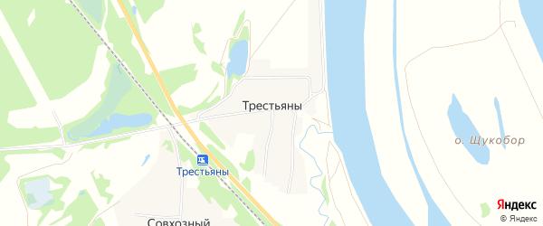 Карта деревни Трестьяны в Нижегородской области с улицами и номерами домов