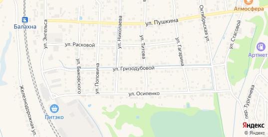 Улица Гризодубовой в Балахне с номерами домов на карте. Спутник и схема онлайн