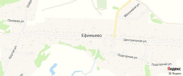 Земляничная улица на карте села Ефимьево Нижегородской области с номерами домов