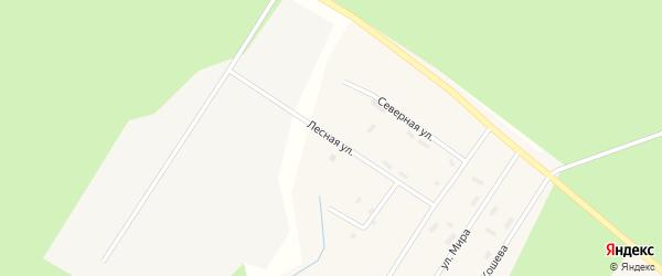 Лесная улица на карте поселка Сельменьги Архангельской области с номерами домов
