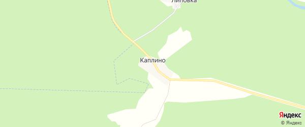 Карта деревни Каплино в Костромской области с улицами и номерами домов