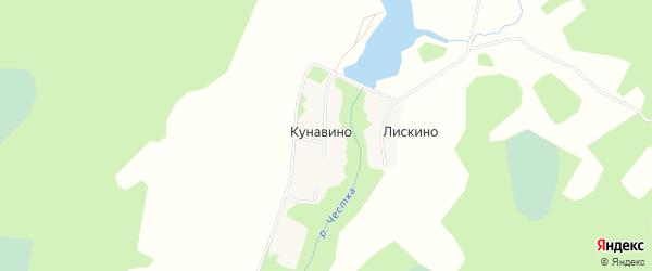 Карта деревни Кунавино (Линдовский с/с) города Бора в Нижегородской области с улицами и номерами домов