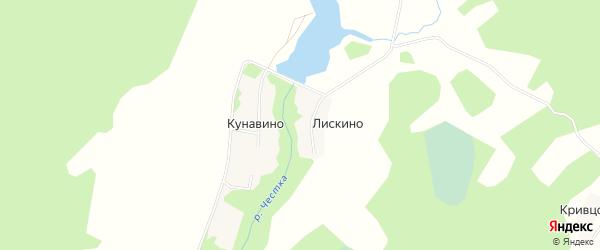 Карта деревни Лискино (Линдовский с/с) города Бора в Нижегородской области с улицами и номерами домов