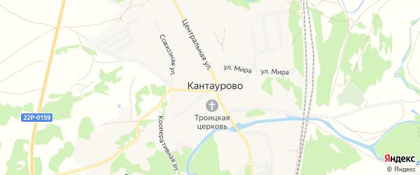 Карта села Кантаурово (Кантауровский с/с) города Бора в Нижегородской области с улицами и номерами домов