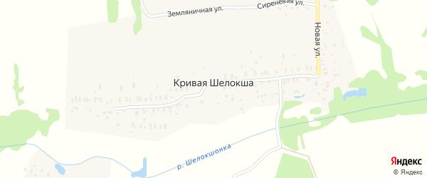 Яблоневая улица на карте деревни Кривой Шелокши Нижегородской области с номерами домов