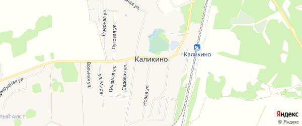 Карта деревни Каликино (Кантауровский с/с) города Бора в Нижегородской области с улицами и номерами домов