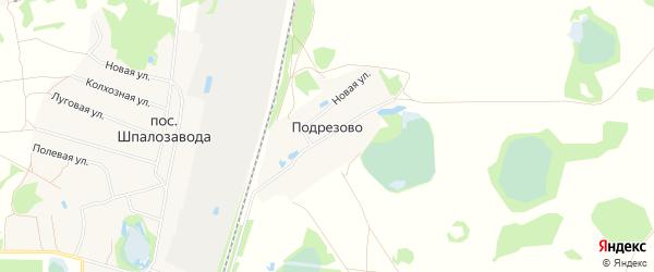 Карта деревни Подрезово (Кантауровский с/с) города Бора в Нижегородской области с улицами и номерами домов
