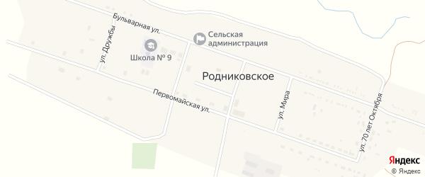 Новая улица на карте Родниковского села Ставропольского края с номерами домов