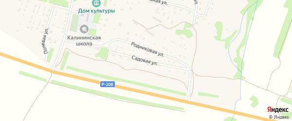 Садовая улица на карте населенного пункта Центральной усадьбы совхоза им. Калинина Пензенской области с номерами домов