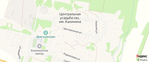 Центральная улица на карте населенного пункта Центральной усадьбы совхоза им. Калинина Пензенской области с номерами домов