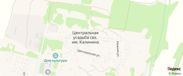 Совхозная улица на карте населенного пункта Центральной усадьбы совхоза им. Калинина Пензенской области с номерами домов