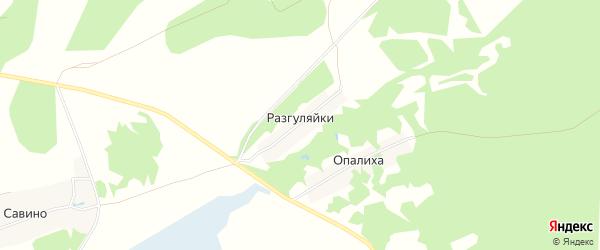 Карта деревни Разгуляйки (Краснослободский с/с) города Бора в Нижегородской области с улицами и номерами домов