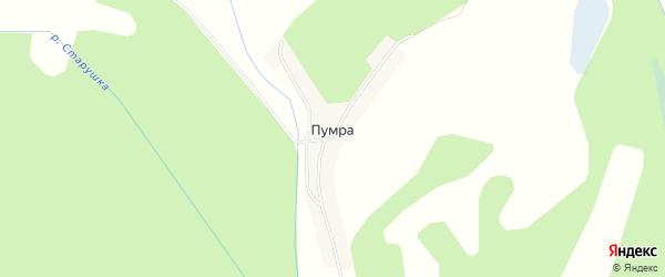 Карта деревни Пумра (Редькинский с/с) города Бора в Нижегородской области с улицами и номерами домов