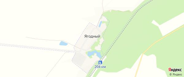 Карта Ягодного поселка в Пензенской области с улицами и номерами домов