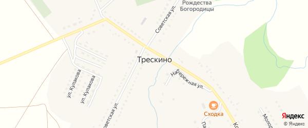 Улица Свободы на карте села Трескино Пензенской области с номерами домов
