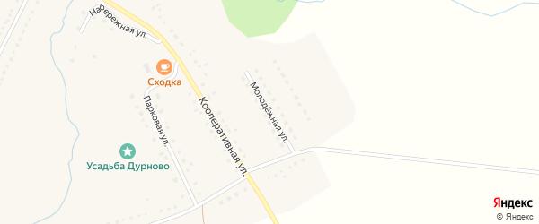 Молодежная улица на карте села Трескино Пензенской области с номерами домов