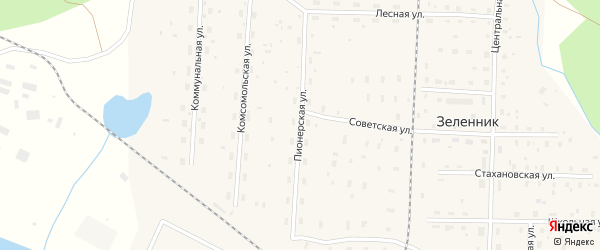 Пионерская улица на карте поселка Зеленника с номерами домов