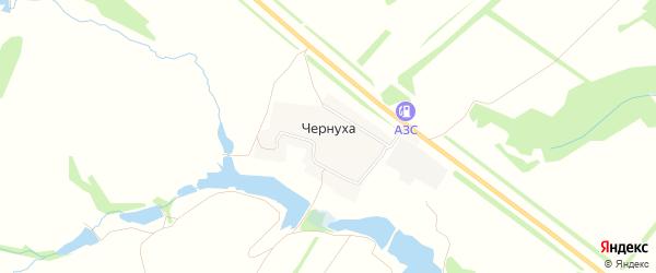 Карта деревни Чернухи в Нижегородской области с улицами и номерами домов
