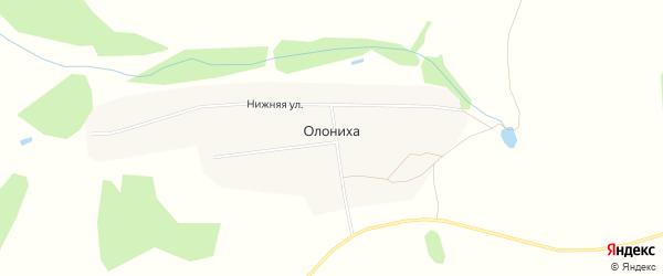 Карта деревни Олонихи города Семенова в Нижегородской области с улицами и номерами домов