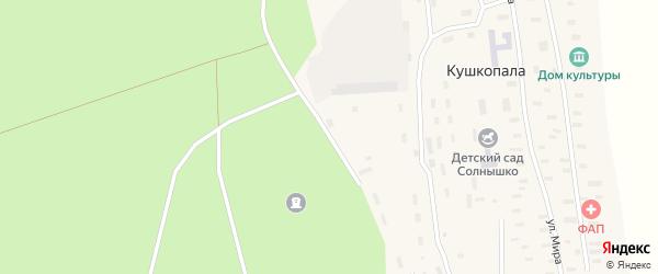 Лесная улица на карте деревни Кушкопалы Архангельской области с номерами домов