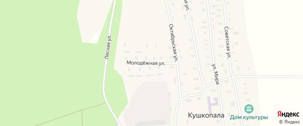 Молодежная улица на карте деревни Кушкопалы Архангельской области с номерами домов