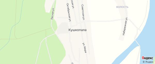 Карта деревни Кушкопалы в Архангельской области с улицами и номерами домов