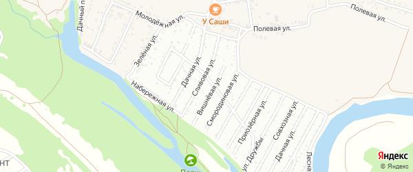 Сливовая улица на карте СНТ Ахтубинец Волгоградской области с номерами домов