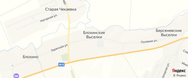 Карта поселка Блохинские Выселки в Мордовии с улицами и номерами домов