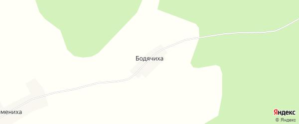 Карта деревни Бодячихи в Костромской области с улицами и номерами домов