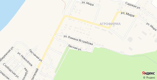 Улица Романа Ястребова в поселке Агрофирма в Николаевске с номерами домов на карте. Спутник и схема онлайн