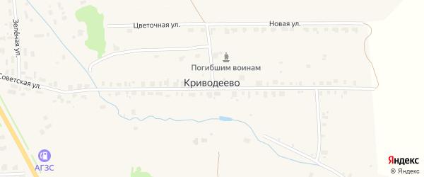 Цветочная улица на карте деревни Криводеево Вологодской области с номерами домов