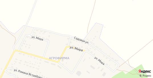 Садовая улица в поселке Агрофирма в Николаевске с номерами домов на карте. Спутник и схема онлайн