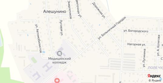 Рябиновый переулок в Шарье с номерами домов на карте. Спутник и схема онлайн