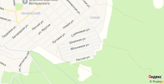 Карта садового некоммерческого товарищества Южный в Шарье с улицами, домами и почтовыми отделениями со спутника онлайн
