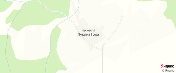 Карта деревни Нижней Лукина Гора в Вологодской области с улицами и номерами домов