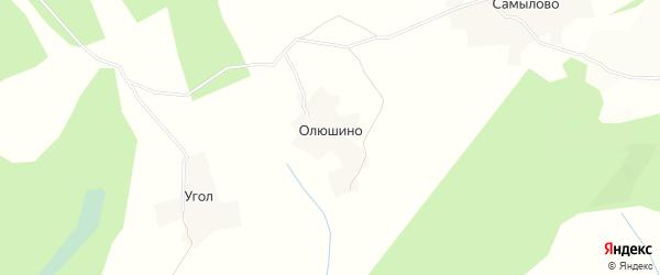 Карта деревни Олюшино в Вологодской области с улицами и номерами домов