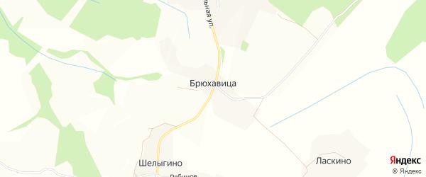 Карта деревни Брюхавица в Вологодской области с улицами и номерами домов