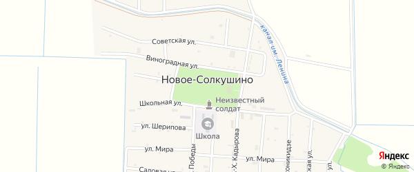 Новый переулок на карте села Новое-Солкушино Чечни с номерами домов